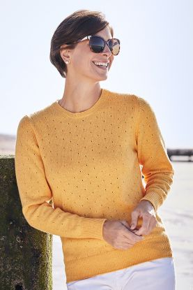 Felicity 4 Ply Cashmere Crew Neck Sweater
